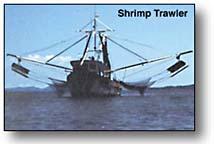 shrimpboat.jpg